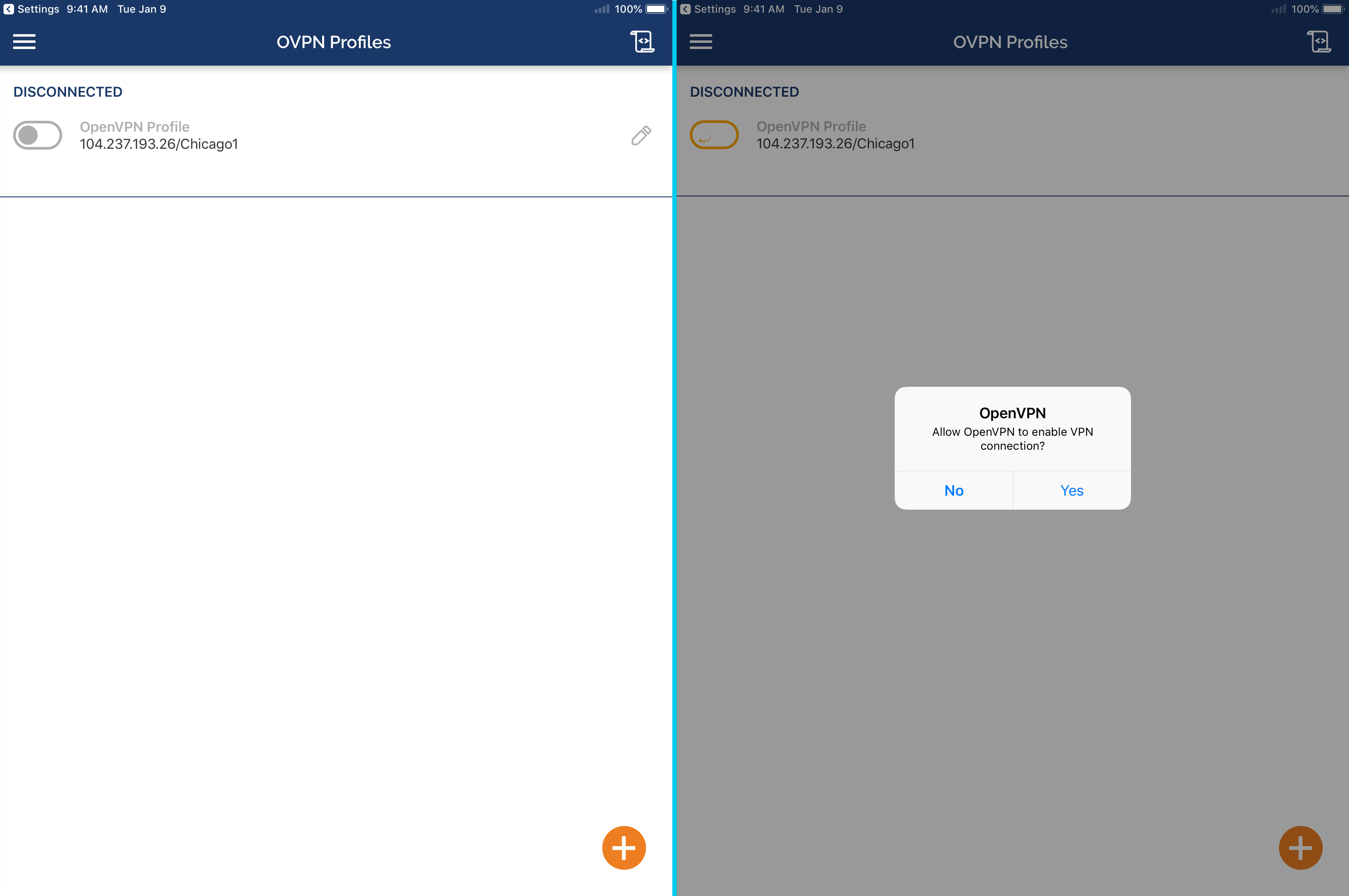 OpenVPN for iPad and iPhone (iOS) | Perfect Privacy